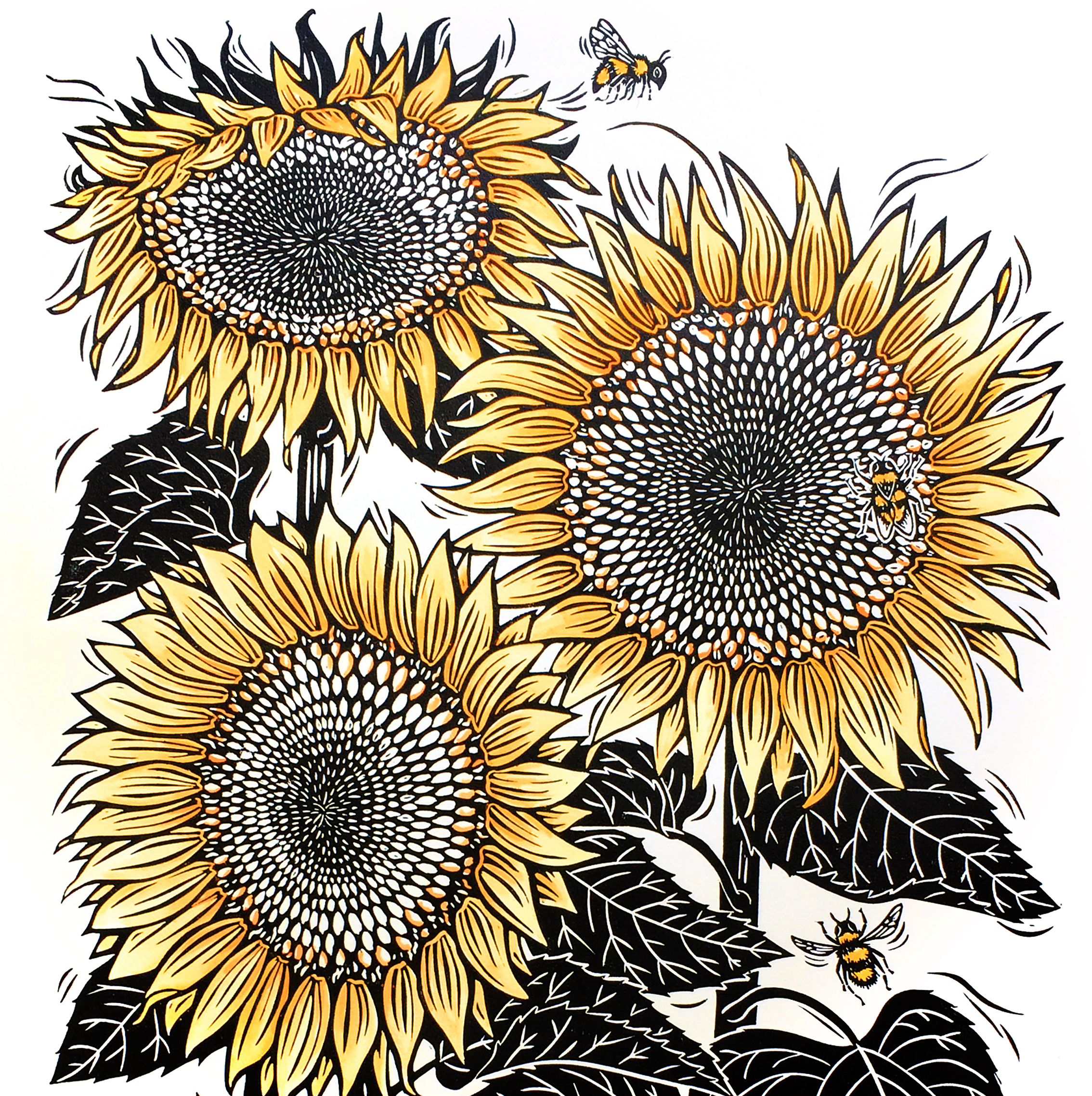 Jill Bergman lino print artist in Steamboat Springs CO Sunflowerscroppedsquare